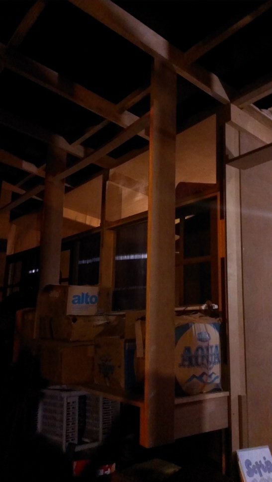 Experimental Plywood Housing